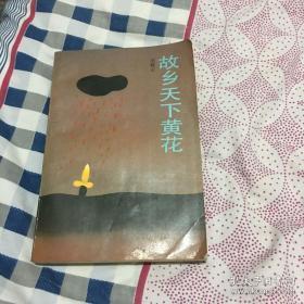 故乡天下黄花--一部反映民国初期农村复杂社会风貌的小说