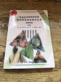 怎样种菠菜