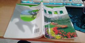 风景园林与观赏园艺系列丛书:植物造景