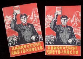 以林副统帅为光辉榜样无限忠于伟大领袖毛主席(上、下册)