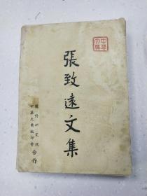 张志远文集