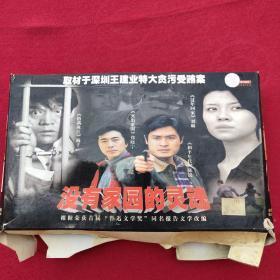 电视剧.没有家园的灵魂.CD20片装 光盘正常播放