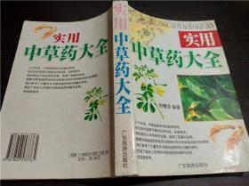 实用中草药大全 张穗坚 编著 广东旅游出版社 2004年 大32开平装
