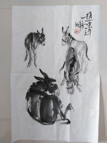 赵忠祥画~驴