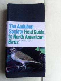 The Audubon Society Field Guide To North American Birds(Eastern Region)   英文原版皮革面软精装    前半部分为铜版纸彩图300多页