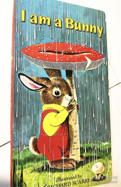 I Am a Bunny