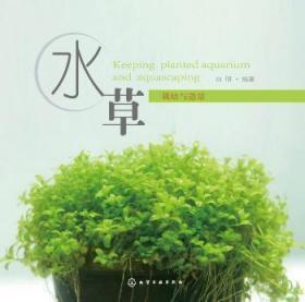 全新正版圖書 水草栽培與造景 白明編著 化學工業出版社 9787122205063 簡閱書城
