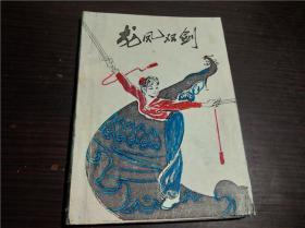 龙凤双剑 王菊蓉 等整理 人民体育出版社 32开平装