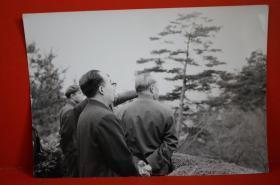 【新中国第一任国家邮电部部长朱学范,以及上世纪八十年代以前历任部长、副部长钟夫翔、王子纲、李玉奎等上世纪七十年代末公务合影照1张】, 上世纪七十年代末拍摄原版黑白泛银照片,照片尺寸(长×宽):16.3厘米×11.5厘米。(编号:02-03)