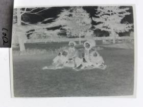 建国前后2*4cm老底片1张 宁波知识分子家庭系列 草地母子