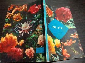 花卉 彭学苏 安徽科学技术出版社 1980年 32开平装