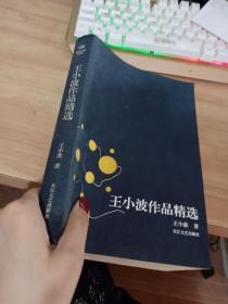 王小波作品精选