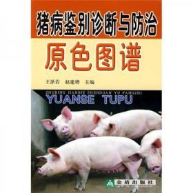 二手正版 猪病鉴别诊断与防治原色图谱 金盾出版社 9787508252131
