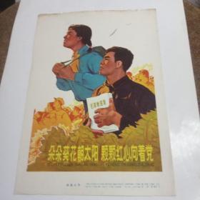 文革宣传画:朵朵葵花朝太阳 颗颗红心向着党