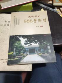 洪城秘史:828警卫营