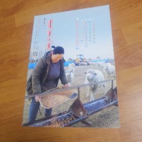 内蒙古生活周报  蒙文版  2016/1/19