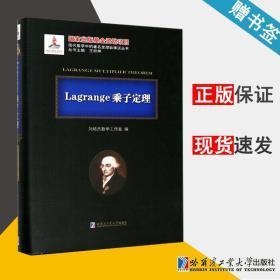 Lagrange乘子定理 刘培杰数学工作室 现代数学中的著名定理纵横谈丛书 乘子定理 数学 哈尔滨工业大学出版社 9787560359083 书籍#