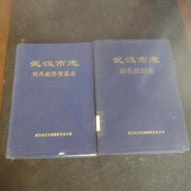 武汉市志两册   对外经贸志政权政协志