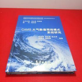 CAMS大气数值预报模式系统研究——我国重大天气灾害形成机理与预测理论研究