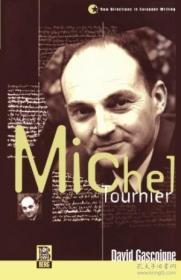 Michel Tournier (new Directions In European Writing)