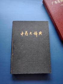 中药大辞典
