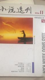 小说选刊杂志 2008年第11期,总第282期 九成新 包平邮