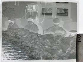 六七十年代6*7cm大尺寸底片1张 那个年代的袋装牛奶生产线 甘南乳品服务站