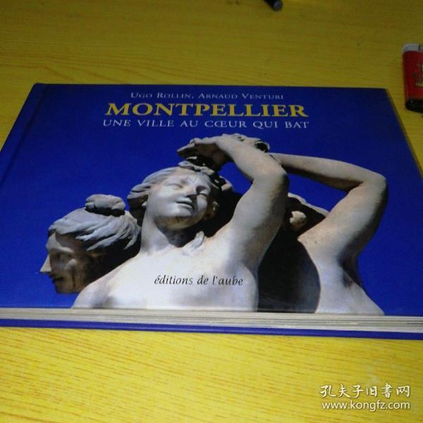 MONTPELLIER--蒙彼利埃(图文版,法文原版)