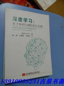 深度学习:基于Matlab的设计实例
