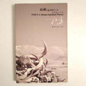 西藏:远方的上方 祝勇文化笔记