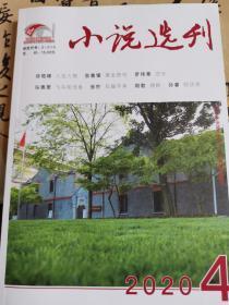 小说选刊2020年4期