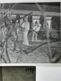 120底片1张 本溪日报摄影资料 记者下乡 农村妇女擦玻璃