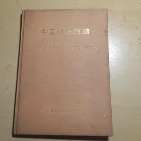 中医诊法图谱