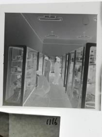 120底片1张 本溪日报摄影资料 有色金属展示