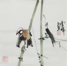 【超值特價】【保真】【云峰】中國當代著名書畫家、中國書法家協會會員、中央書畫研究院院士、副院長、中國書畫家協會會員、大學教授、北京名人書畫院高級院士、小品花鳥(33*33CM)38.