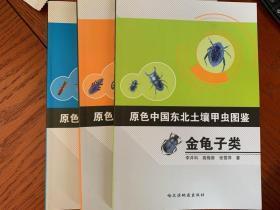 原色中国东北土壤甲虫图鉴-(步行虫类,金龟子类,隐翅虫类 拟步甲类 三本一套)