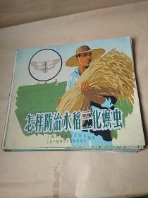 怎样防治水稻三化螟虫(散页21张)