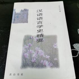 汉语语言学史精要