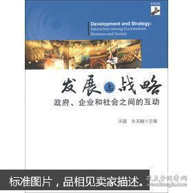 【正版】发展与战略:—政府、企业和社会之间的互动