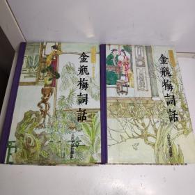 金瓶梅词话(精装共两册)