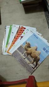 小聪仔. 自然 —.— 松树、苦瓜、象鼻虫、黄豆、牛、石榴、独角仙、蜜蜂、葡萄、狗、骆驼【11册合售】