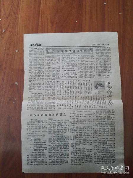 河北科技报1978.06.16(上海市1978年中学生数学竞赛题解,一个新出生的毛孩)