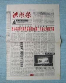 湖北党报——洪湖报