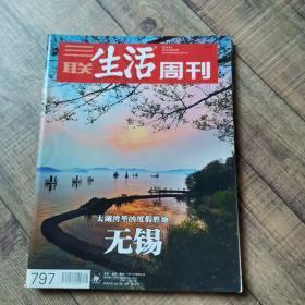 三联生活周刊 2014年第31期  总797期  【大16开平装】