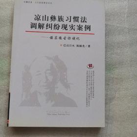 凉山彝族习惯法调解纠纷现实案例:诺苏德古访谈记