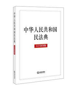 预售 2020中华人民共和国民法典 大字条旨版
