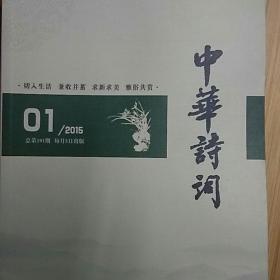 中华诗词191-202期
