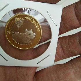 2019年10元,猪年币,纪念币,金币