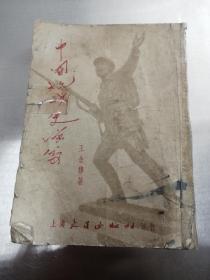 中国抗战史演义