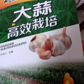 高效种植致富直通车:大蒜高效栽培